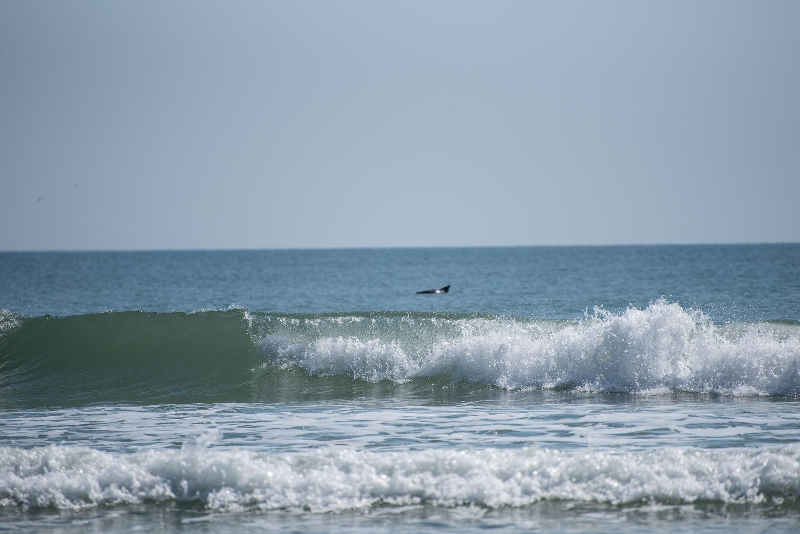 5 Fun Facts About New Smyrna Beach