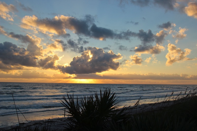 5 Fun and Exciting Things to Do in New Smyrna Beach